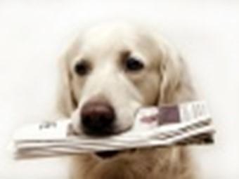 Avis og tidsskrift